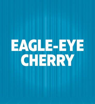 Eagle-Eye Cherry